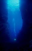 Deeps blue walls