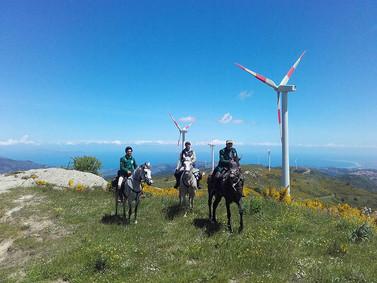 Punto panoramico, Escursioni a Cavallo Nebrodi