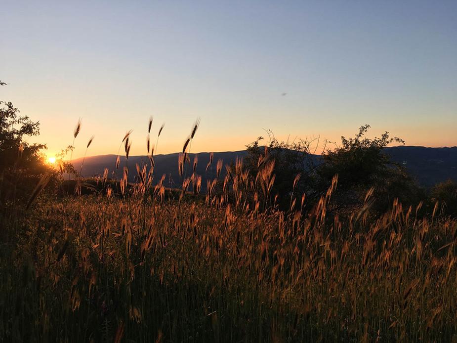 Escursione Etna al tramonto