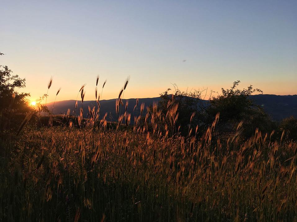 The Golden Light, Sunset Tour Etna
