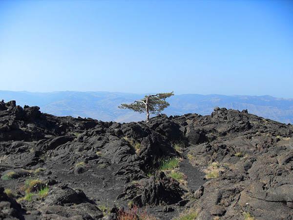 Visitare l'Etna, Campo lavico