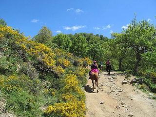Escursioni a Cavallo 1 Maggio