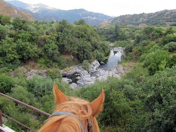 Horseback Riding Sicily, River