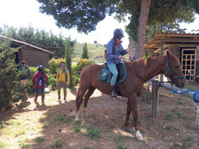Starting for an Horse Ride in the Valley of Temples