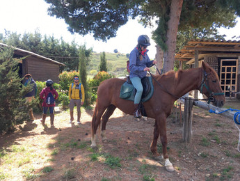 Maneggio, Escursioni a Cavallo Agrigento