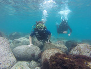 Diving in Sicily Italy