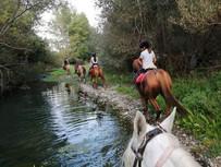 Horse riding Alcantara River
