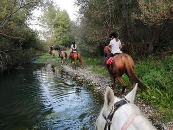 Lungo il fiume, Escursioni a cavallo Alcantara