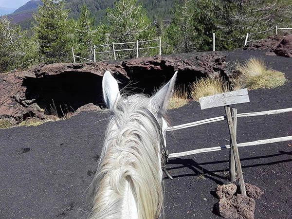 Etna Horse Tour, Lava field