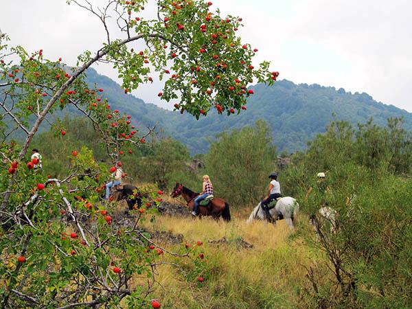 Horseback Riding Sicily, Vegetation