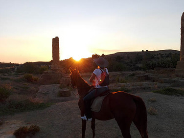 Valley of temples horse experience