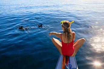 Nuotare con i Delfini, Tour in Barca Catania