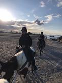 Sicily horse riding at the beach