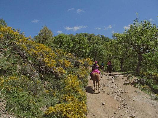 Escursione a cavallo fiume Alcantara