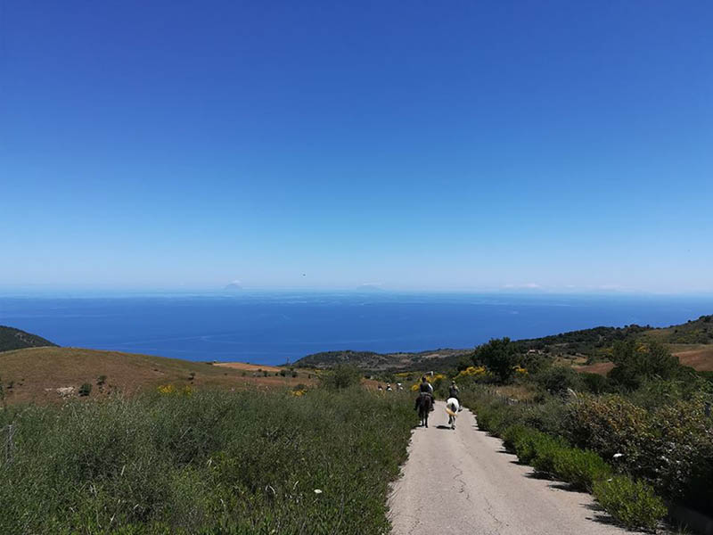 Sea View, Horse Riding in Sicily