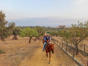 Escursione a Cavallo Valle dei Templi, Agrigento