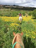 Escursioni a Cavallo, Sentiero