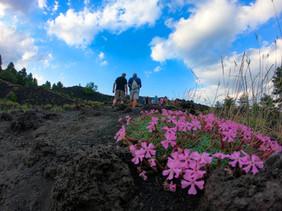 Breve Trekking, Escursioni Etna