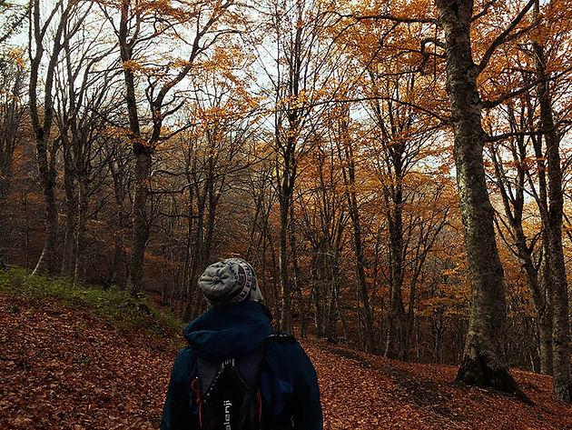 Cosa fare a Montalbano Elicona, Trekking Malabotta