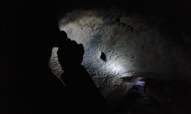Esplorazione grotta, Escursione tramonto Etna