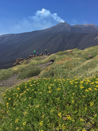 Etna Hiking Tour, View of the summit