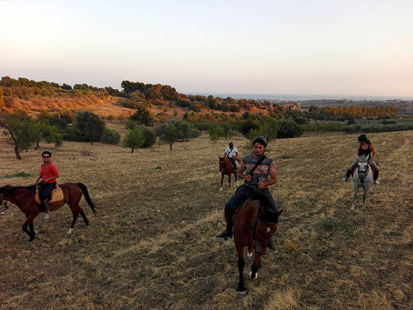 Things to do in Agrigento Horse Tour