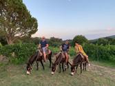 Escursione a Dorso d'Asino Etna