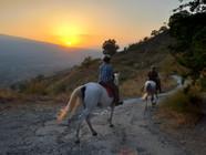 Etna Horse Tour, Path