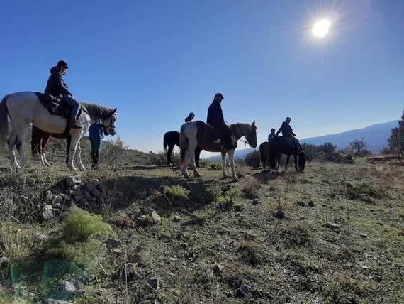 Siracusa horse riding