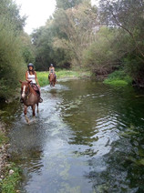 Horse Riding Catania