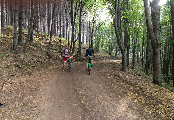 Etna MTB Tour, Bosco