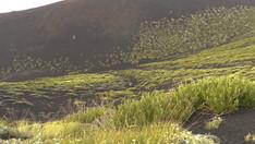 Un'immenso campo lavico, Escursione Etna