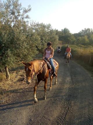 Giro a cavallo Catania