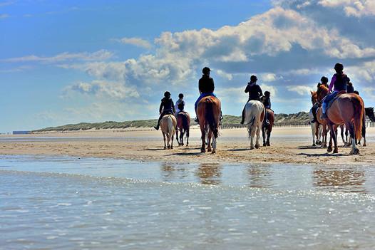 Passeggiata a cavallo sulla spiaggia vicino Taormina