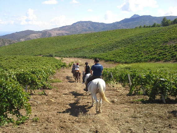Sicily horse tour Pollina
