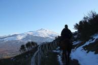 Etna View, Sicily Horse Riding