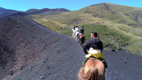 Horse tour on mount Etna