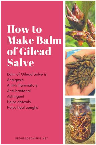 How to Make Balm of Gilead Salve