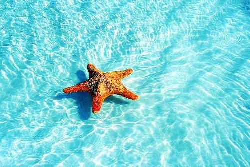 Trois trucs pour maintenir ses acquis en vacances