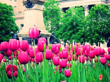 La détox du printemps en 3 conseils santé