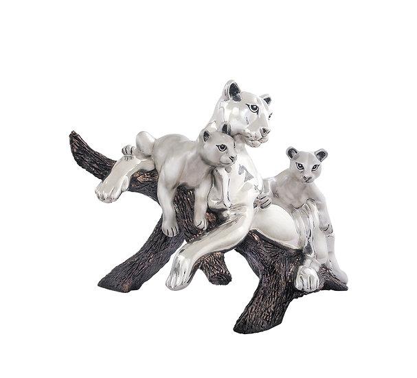 Family of Pumas