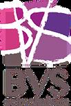 logo bvs schooladvies.png