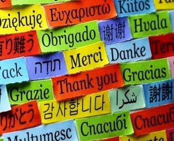 Norma Padrão e Língua Estrangeira: uma linha tênue