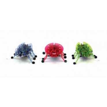 HEXBUG Beetle ( (Assorted Colours)