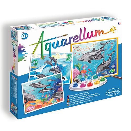 Dolphins - Aquarellum