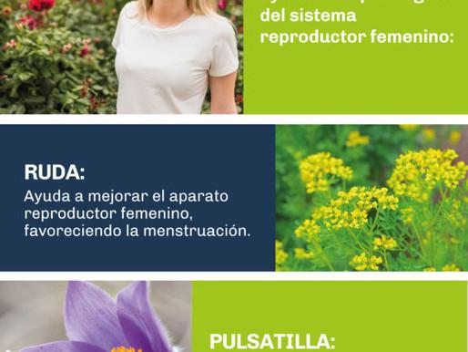 Mujeres: Nuestra belleza está en nuestro interior.