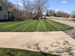 yard with stripes