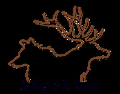 Le cerf et la louve accueil.png