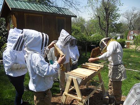 beekeeper1