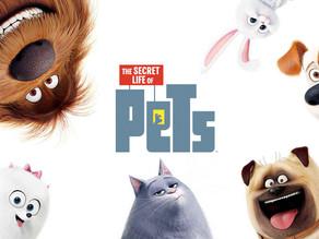 Pets - A Vida Secreta dos Animais (SEM Spoilers)